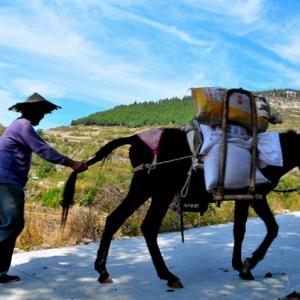 质朴山村路上坡和下坡-华夏文化艺术网