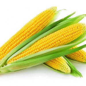 玉米是个好食材 营养专家推荐四种升级吃法